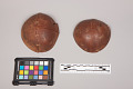 View Coconut Shell Cups digital asset number 3