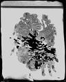 View Copper Plate (Human Figure) digital asset number 5
