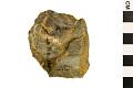 View Uniface, Prehistoric Stone Artifact Prehistoric Stone Tool digital asset number 1