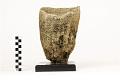 View Vase Sponge digital asset number 2