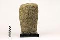 View Loggerhead Sponge digital asset number 1