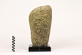 View Loggerhead Sponge digital asset number 2