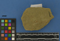 View Sandstone Abrader digital asset number 1