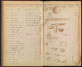 View Sheet Of Copper With Figures. digital asset number 1