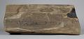 View Wooden Stool digital asset number 3