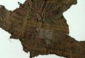 View Painted Deerskin Fragmentary digital asset number 8