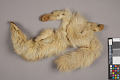 View Fur Skin Of Fur String digital asset number 14