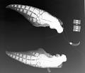 View Stenella longirostris longirostris (Gray, 1828) digital asset number 0