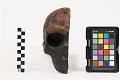 View Saldanha, Fossil Hominid, Human digital asset number 4