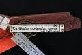 View Cardinalis cardinalis igneus digital asset number 8