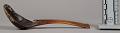 View Elkhorn Spoon digital asset number 2