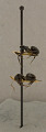 View Camponotus (Myremurynota) christophei Wheeler & Mann, 1914 digital asset number 3
