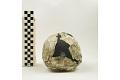 View KNM-WT 15000A, KNM-WT 15000, Turkana Boy, Human Fossil digital asset number 2