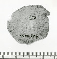 View Bone Disk, With Ticked Edges digital asset number 1