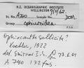 View Ophiacantha otagoensis Fell, 1958 digital asset number 2