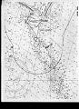 View Eubalaena glacialis (Muller, 1776) digital asset number 1