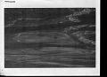 View Eubalaena glacialis (Muller, 1776) digital asset number 3