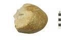 View Prehistoric Stone Tool digital asset number 0