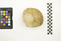 View Prehistoric Stone Tool digital asset number 1