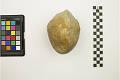 View Prehistoric Stone Tool digital asset number 2