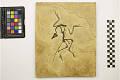View Archaeopteryx siemensii digital asset number 2