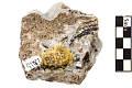 View Carbonate Mineral Smithsonite digital asset number 1