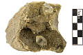 View Tectosilicate Mineral Quartz (Herkimer Diamond) digital asset number 0