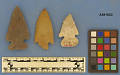 View Projectile Points digital asset number 0