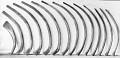 View Balaenoptera physalus (Linnaeus, 1758) digital asset number 4