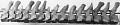 View Balaenoptera physalus (Linnaeus, 1758) digital asset number 13