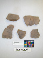 View Sherds, Restorable Pot digital asset number 3