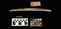 View Bone Needle For Sewing Rushes Together digital asset number 1