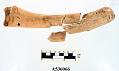 View Digging Stick Handle Fragment digital asset number 0