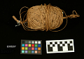 View String Made From Bark Of Ulmus Fulva (Elm) digital asset number 0