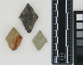 View Projectile Points digital asset number 4