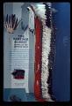 View Feather Headdress digital asset number 6