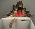 View Feather Headdress digital asset number 5
