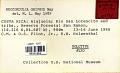 View Neocordulia griphus May, 1991 digital asset number 1