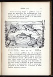 P. 9 Japanese Fantail, Japanese Fringetail, Common Gold Fish, Comet, Telescope