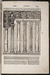 Columnarum ex sex generibus capituloru