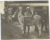 view Henry Bacon standing behind a donkey in Egypt. digital asset number 1