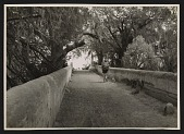 view Unidentified man carrying a bundle of sticks on a bridge digital asset number 1