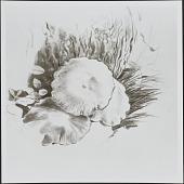 view Works of Art, Studies digital asset: Works of Art, Studies