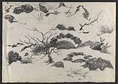 view Study for <em>Winter</em> by Peter Blume digital asset number 1