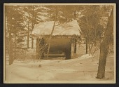 view Gladys Thayer in her sleeping hut digital asset number 1