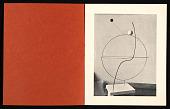 view <em>Alexandre Calder : Volumes, vecteurs, densités, dessins, portraits</em> digital asset number 1