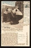 view Lenore Tawney postcard to Maryette Charlton digital asset number 1