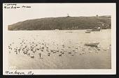 view Lenore Tawney, Monhegan Island, Maine mail art to Maryette Charlton, Bermuda digital asset number 1