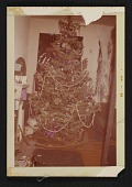 view Christmas tree in Jay DeFeo's Fillmore Street apartment digital asset number 1