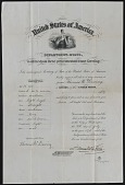 view Biographical Material, Dewing, Thomas Wilmer, Citizenship Certificate digital asset: Biographical Material, Dewing, Thomas Wilmer, Citizenship Certificate: 1876